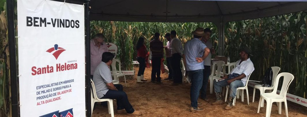Santa Helena Sementes participa da Vitrine do Milho Pdpl em Cajuri/MG
