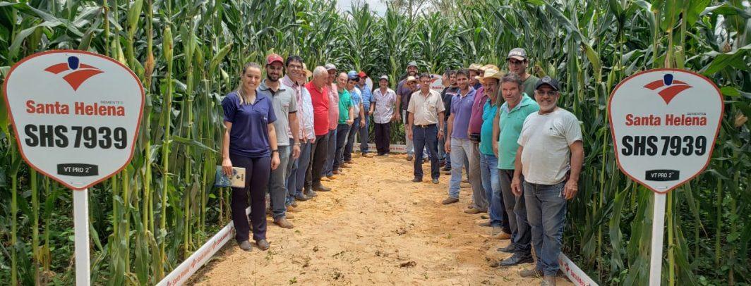 Santa Helena Sementes realiza Dia de Campo em Itapecerica/MG