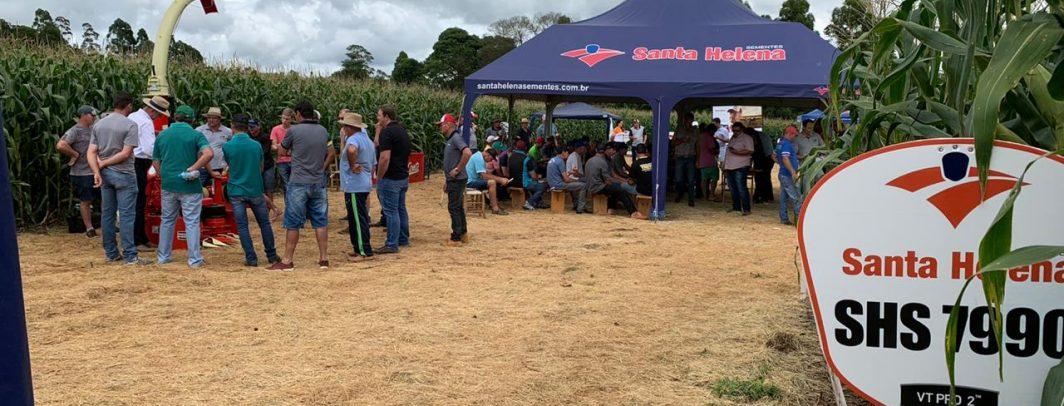 Santa Helena Sementes realiza Dia de Campo em Cunha Porã/SC