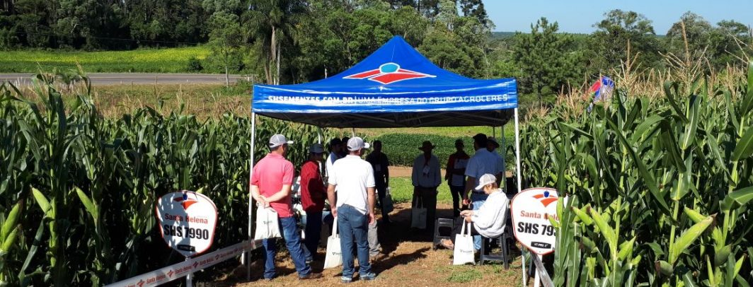 Dia de Campo CooperMap recebe palestras da Santa Helena Sementes